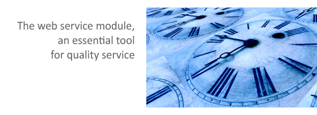 The WEB Service Module: an essential tool for quality service
